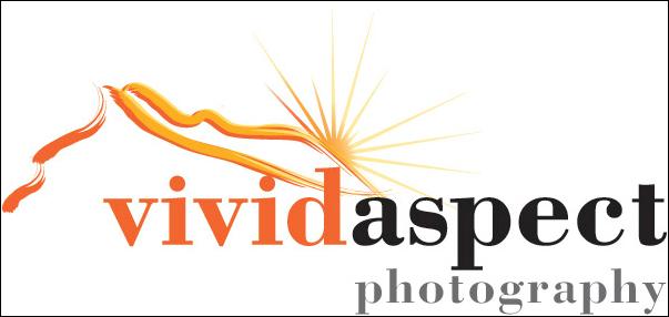 Vivid Aspect Image Licenses